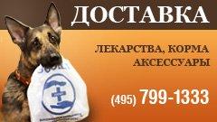 Зоомагазин Зоовет. Зоомагазины Москвы
