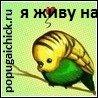 ЛeнЧиk