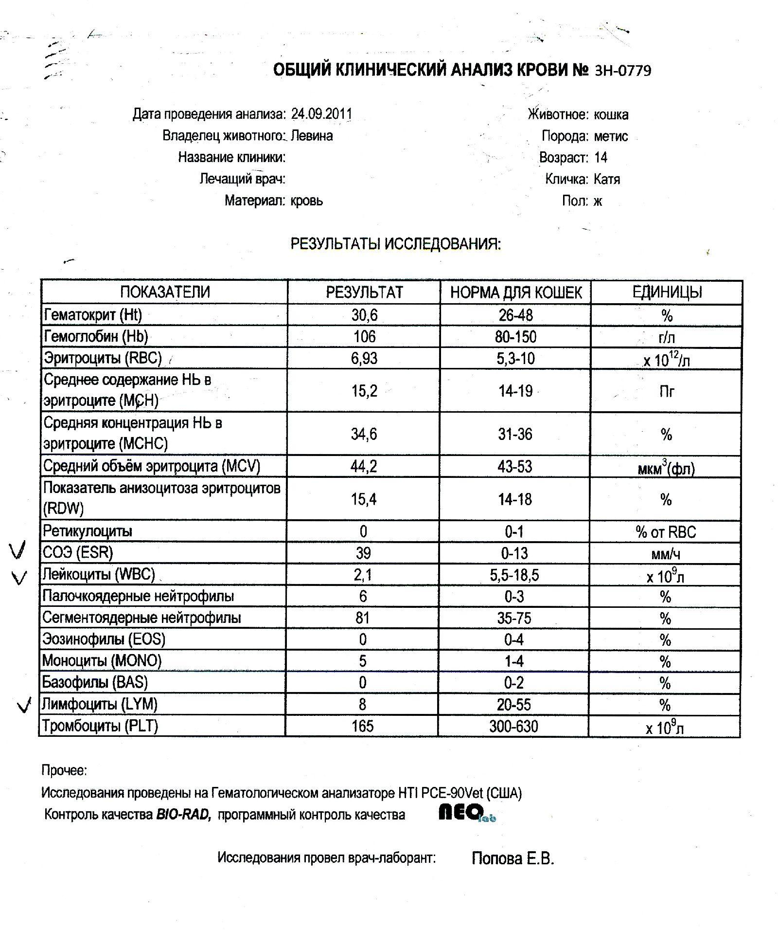 Результаты клинического анализа крови 14 фотография