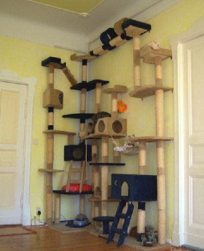 Игровые комплексы для кошек сделать своими руками
