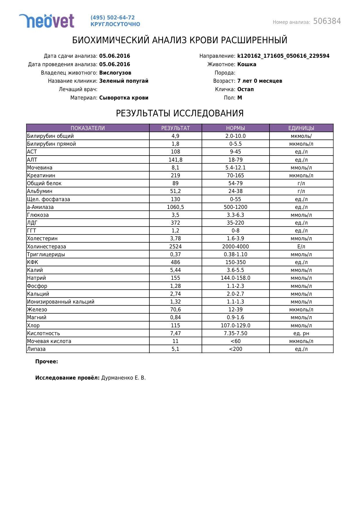 Общий анализ крови - свидетель нарушений в организме 84