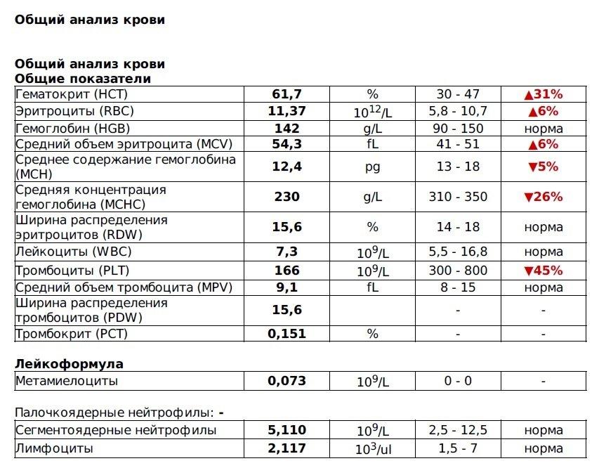 Схема общий анализ крови