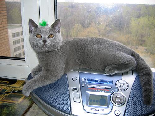 На магнитофоне Фото прислала Любовь Воронова