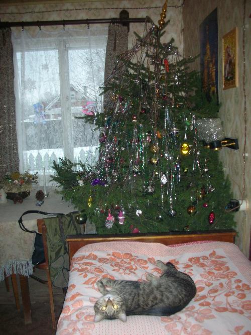 А елка-то у вас покривилась... Фото опубликовал: Юкси
