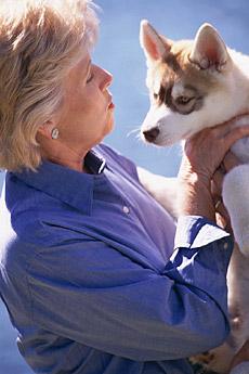"""На данной странице представлен перечень статей, опубликованных на сайте в разделе  """"Собаки """" ."""