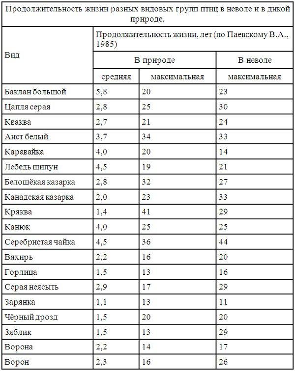 таблицу продолжительности жизни деревьев
