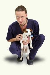 Мастер-классы для ветеринарных врачей и студентов