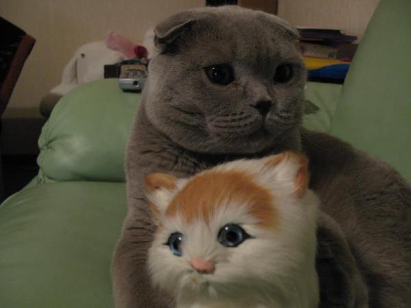 Бася с подружкой:)