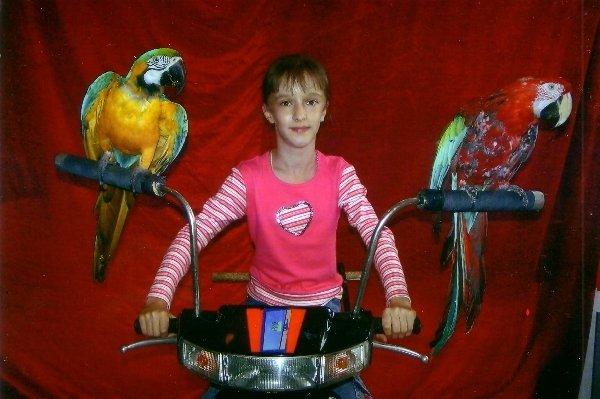 Мы поедем мы помчимся На мотоцикле утром ранним, С попугаями мы вместе Уедем далеко!