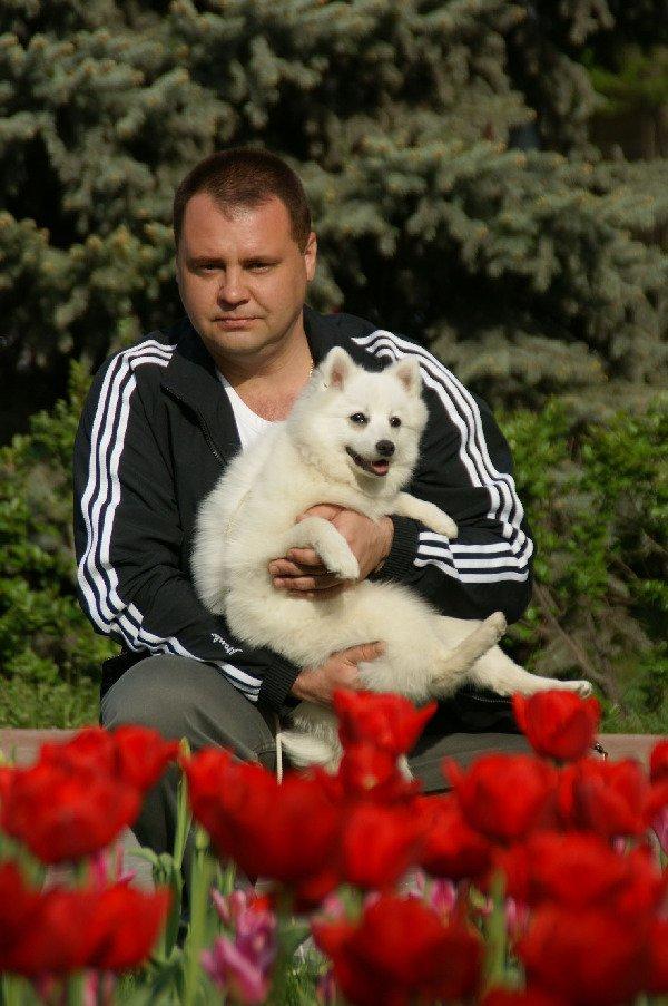 Большая Мужская любовь - к маленькой собаке! Рассказ 4. Непридуманные истории прошпица!