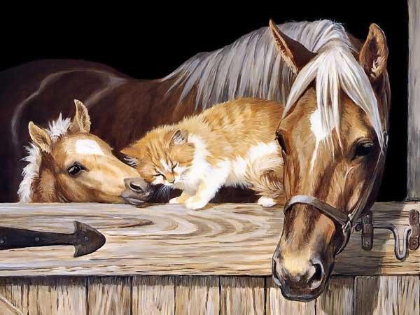 лошади и кошка