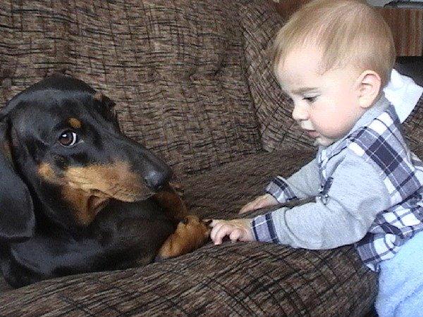 Это моя собаченька с сыном