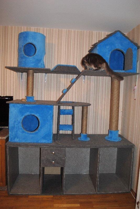 спально-игровые комплексы для кошек