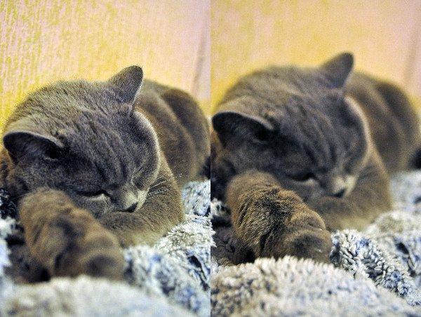 Спать мы оооочень любим)