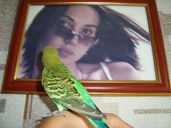 Кеша любуется портретом.