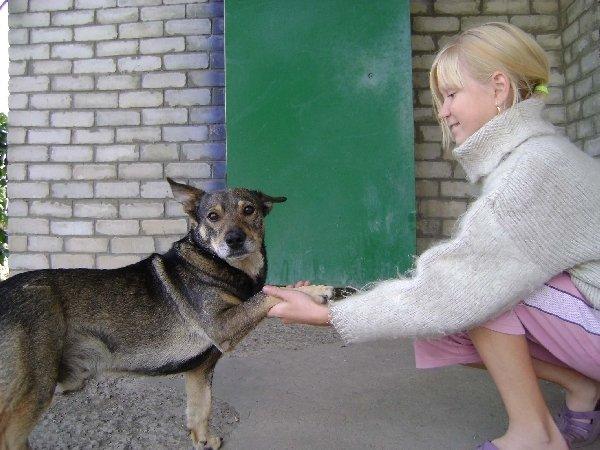 Человек собаке друг, Это знают все вокруг!