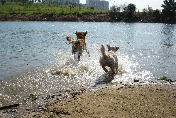 ура, купаться!