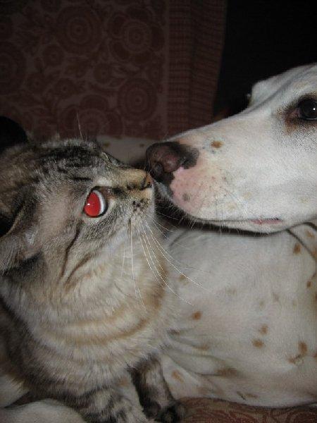Дай же я тебя поцелую !!!