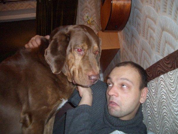 Говорят, что собаки похожи на своих хозяев. А если хозяину хочется походить на своего пса? Если не ловкостью и статью, то хотя бы лицом...