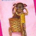 ������� ��� ������ ����������,   russkiy toy-terier puppy,   ���-������ ����,   ��� ���� http://www.gaftoy.narod.ru