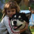 Маламуты очень любят детей и эта любовь взаимна
