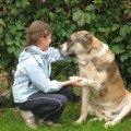 Любимец - пёс Икар