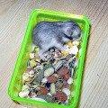 Хомячий ребенок: такой маленький,   а уже залез в мамину миску!