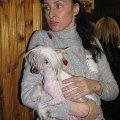 У всех собаки,   как собаки,   а моя королевишна!