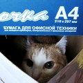 Кот породы коробочный.