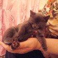 Мы так спим)