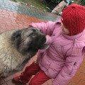 Любимец - кавказская овчарка Сара<br /> Любовь взаимная :)