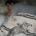 тихо,  тихо. хозяин спит