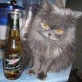 Алкоголик!  )))