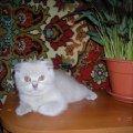 Моя маленьккая Дуся)))