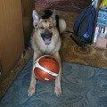 Кто со мной в баскетбол?))