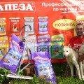 Сибирские хаски из Хаски-Клуба г.Пушкино