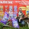 Наш настоящий  рабочий Сибирский хаски в Хаски-Клубе Пушкино
