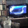 смотрю телевизор