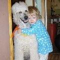 Дочка Катюша 2,  5 лет со своей любимой собакой большим пуделем Нюсей 9 лет