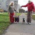 Веселая компания . Мила Киселева  с Гошей ( Марлен Брао Игл ) и Марина Задорожная с Вовчиком.