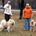 Марина Задорожная ,   Халиф ,   я и Гоша  ( Марлен Брао Игл).