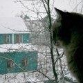 а за окном уже мороз!
