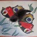 Буська изображает из себя бабочку на лежащей на полу картине
