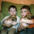 Наши дети и наши щенки