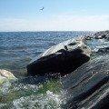 Полет над водами Байкала