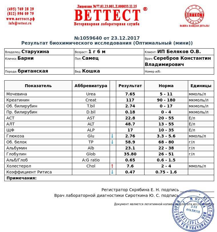 Alb в анализе крови медицинская справка 26 форма в рк