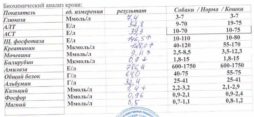 Печеночные показатели биохимического анализа крови