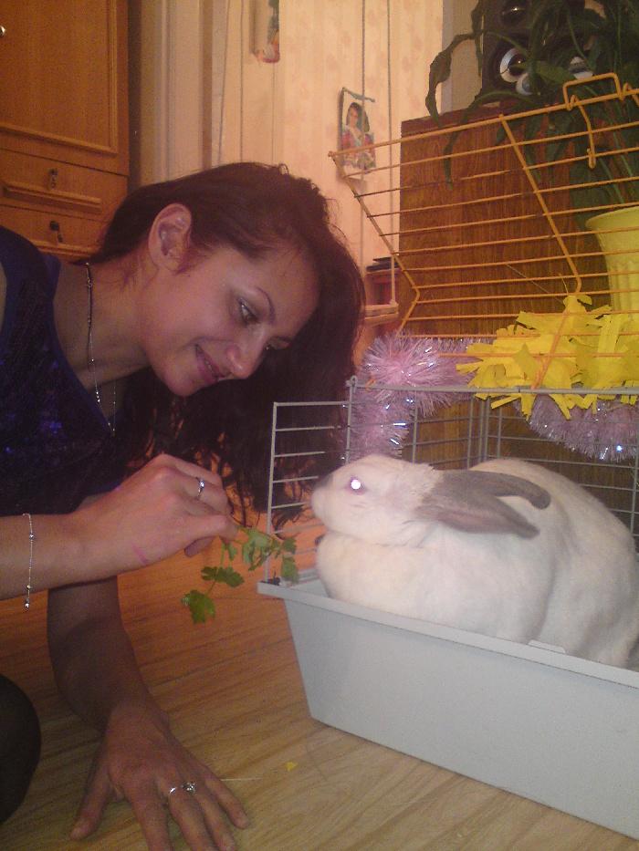 Мэйби Кролик