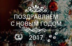 С Новым 2017 годом,   дорогие друзья!