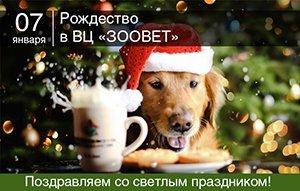 Поздравляем со светлым праздником Рождества!